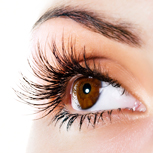 Upper Eyelid